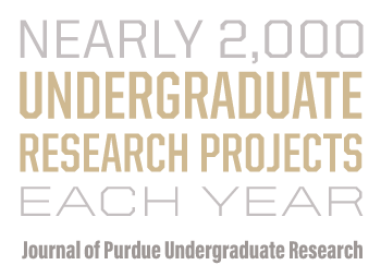 Nearly 2,000 undergraduate research projects each year